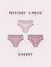 Women's Air Mesh Cheeky Mystery 3 Pack Image