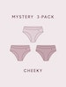 Women's Second Skin Cheeky Mystery 3 Pack Image